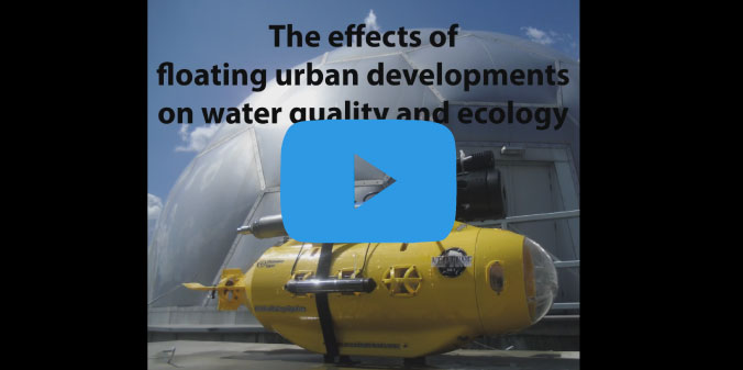 The effects of floating urban development on water quality and ecology